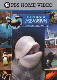 Georgia Aquarium - Keepers of the Deep [DVD] [2006]
