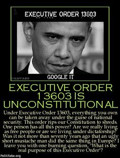 As in most of Obama's executive orders the definitions are the most telling of what he/they are doing. Always read the definitions first.