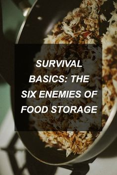 Survival Basics: The Six Enemies of Food Storage | Survival Shelf | Survival & Preparedness Links