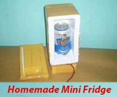 Picture of Homemade a Foam Containers Mini Fridge Refrigerator with Peltier Cooler Thermoelectric