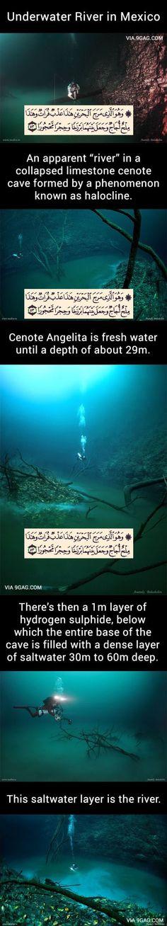 "بسم الله الرحمن الرحيم ""And it is He who has released [simultaneously] the two seas, one fresh and sweet and one salty and bitter, and He placed between them a barrier and prohibiting partition"".Surat Al-Furqān 53"