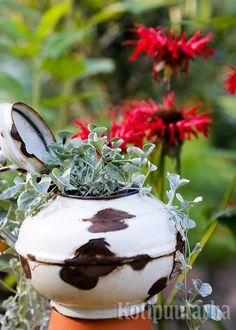 Käyttämättömät astiat ja vanhat esineet luovat rustiikkista tunnelmaa ja toimivat kätevinä istutusastioina. Kuva: Teija Tuisku Panna Cotta, Pudding, Ethnic Recipes, Desserts, Plants, Food, Tailgate Desserts, Dulce De Leche, Deserts