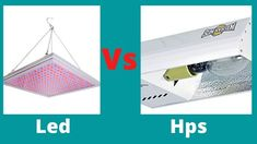 Led vs hps which is better is a very debateable question.If you want to know about Led Vs Hps, this is a great article so never miss.