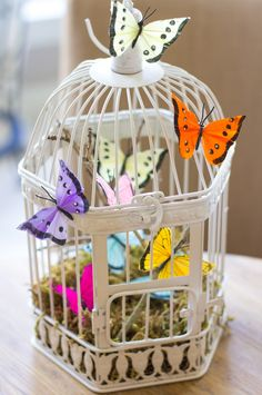 Butterfly Decorated Bird Cage