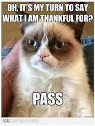 Pass (Favorite Meme Grumpy Cat)