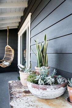 Exterior : back patio painted black with hanging chair and potted plants Outdoor Plants, Outdoor Spaces, Outdoor Gardens, Outdoor Living, Potted Plants, Potted Succulents, Outdoor Patios, Outdoor Kitchens, Small Plants