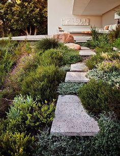 TDP014 - jardines en pendiente (8)