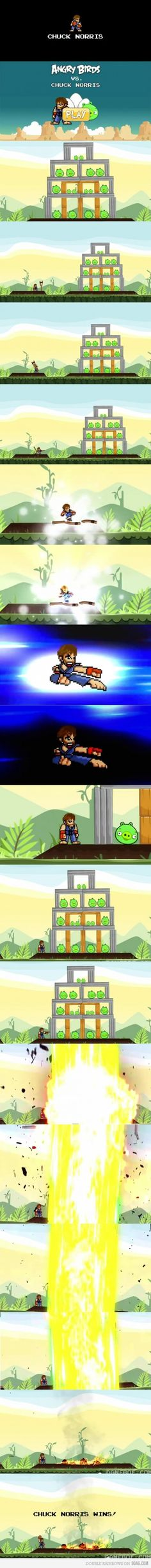 Angry Birds v Chuck Norris