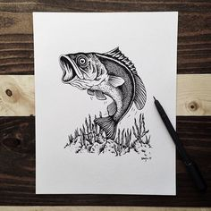 21 Awesome Outdoor Drawings By Sam Larson - 50 Campfires Fish Drawings, Pencil Drawings, Art Drawings, Sam Larson, Deer Skull Tattoos, Fish Sketch, Fish Crafts, Wood Burning Patterns, Desenho Tattoo