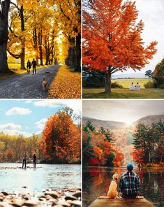 The New England Guide to Leaf Peeping