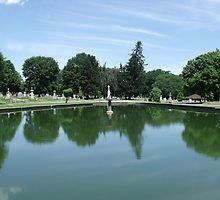 Albany Rural Cemetery - Pond by Stephanie Fay Cemetery, Earthy, Pond, Photography, Water Pond, Photograph, Fotografie, Photoshoot, Garden Ponds
