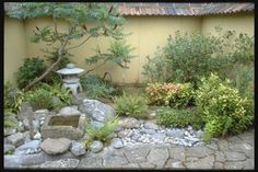 Doing a bit of study on small courtyard landscapes.