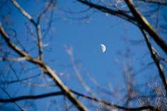 frosty moon in a blue sky