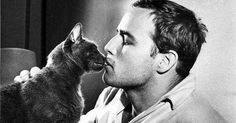 Oscars, Grammys, Pulitzers, Nobel Prizes... What do these prestigious awards have in common? Cats don't care about them. At all. And they don't care about the people who won them, either. This is a gallery of photographs of famous actors, directors, musicians, singers, writers, poets, and artists with cats.
