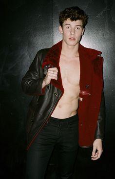 Shawn Mendes (Foto: Reprodução/Flaunt Magazine)