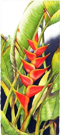 Dancing Heliconia #2 by Barbara Groenteman Watercolor ~ x