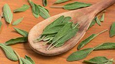 Šalvěj je oblíbené koření a navíc ji můžeme použít i proti různým onemocněním. Z našeho článku se dozvíte, proč se doporučuje konzumace šalvěje.