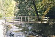 Stony Brook State Park Dansville NY ....Love it!