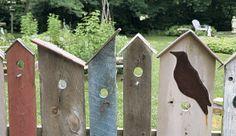 Image: finegardening.com