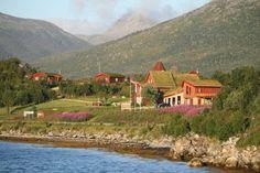 Andøy Friluftssenter restaurant and huts (Lofoten) Lofoten, Norway Travel, Pet Birds, Trip Planning, Wilderness, Kayaking, Adventure Travel, Restaurant, Cabin