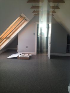 Brighton loft conversions carpenter, builder and specialist Velux window fitter. Builds all loft conversion personally himself to your specifications. Brighton Sussex, Lofts, Jackson, Stairs, Windows, Building, Home Decor, Loft Room, Loft