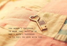 You weren't supposed to mean that much to me and I wasn't supposed to fall in love with you…