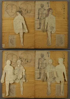 multi-layered, antique medical illustrations as journals