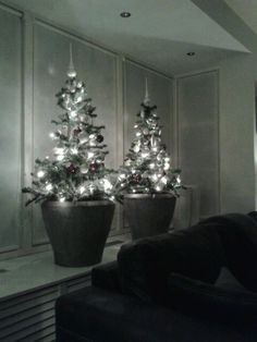 Kerstbomen in de vensterbank.