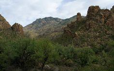 Esperero Canyon and Window Peak, Pusch Ridge Wilderness, AZ