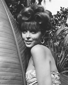 Gilligan's Island. Tina Louise as Ginger, Grant late 1960s