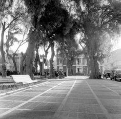Plaza de Copiapó, frente a Casa de la Cultura. Años 60.