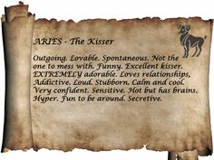 Aries...Outgoing, Loveable, Spontaneous. Not the one to mess with. Funny. Excellent kisser! Addictive, Loud, Stubborn, Calm and Cool. Very confident but sensitive. Hot but has brains. Hyper. Fun to be around. Secretive.