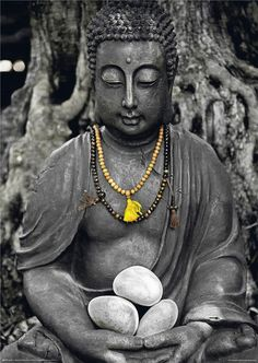 """""""Self-respect is the fruit of discipline; the sense of dignity grows with the ability to say no to oneself.""""   ~ Abraham Joshua Heschel  ॐ lis Lotus Buddha, Art Buddha, Buddha Peace, Buddha Canvas, Buddha Zen, Buddha Buddhism, Buddha Meditation, Buddha Quote, Buda Wallpaper"""