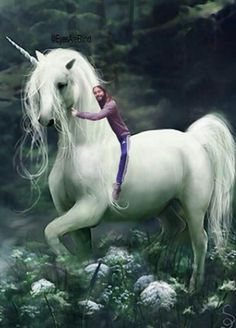 Let Jared Leto Hug The Pain Away #refinery29  http://www.refinery29.com/2014/07/71025/jared-leto-hug-meme#slide4  Jared Leto hugging a unicorn.