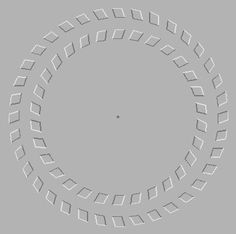 Stare at the dot in the center for 10 seconds then move your head forward and backward. As your head moves closer to your monitor and then back away from your monitor, the circles  will appear to be spinning.