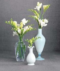 For a Bud Vase