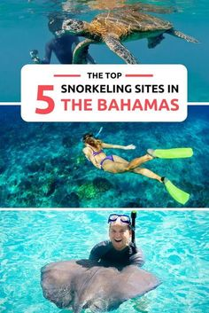 - Vacation Ideas - Top 5 Bahamas Snorkeling Destinations Snorkeling is one of the top things to do in Bahamas. From marine life, to caves and shipwrecks. Explore the 700 islands that make up the Bahamas for the ultimate Bahamas Vacation. A Bucket List. Bahamas Honeymoon, Bahamas Vacation, Bahamas Cruise, Nassau Bahamas, Vacation Trips, Vacation Ideas, Vacation Places, The Bahamas, Bahamas Snorkeling