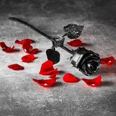 Hand Forged Iron Rose - Anniversary Gift Everlasting Rose - Sixth Anniversary idea FAST Delivery to UK and USA Iron Gifts For Him, Gifts For Her, Iron Anniversary Gifts, Metal Roses, Gifts For Your Girlfriend, Couple Gifts, 6 Years, Little Gifts, Valentine Gifts