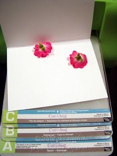 Pressing fresh flowers for card design using Cuttlebug