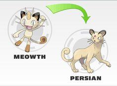 Meowth evolution