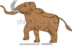 Drawing sketch style illustration of a woolly mammoth, Mammuthus primigenius, a prehistoric elephant that lived during the Pleistocene epoch and one of last mammoth species prancing viewed from side  #mammoth #sketch #illustration