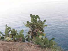 Tossa de Mar - Spain