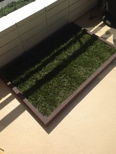 Natural Grass Litter Box For Dogs