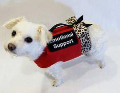 RockinDogs Custom Emotional Support, Service Dog or Therapy Dog or Cat Harnesses available in my Etsy shop. Choice of fabrics/style.