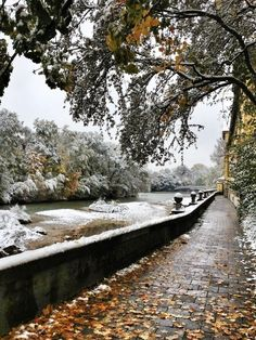 Isar-Radweg in Munich for my J. ♥