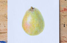 Colored pencil pear drawing