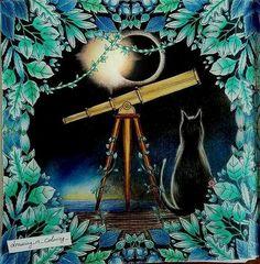 Done! #enchantedforestcoloringbook #foretenchantee #livredecoloriage…
