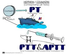 PT/PTT difference