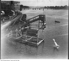 Incredible pictures show horse diving act off 60 foot platforms into 12 feet of water Horse Diving, Atlantic City, Toronto Canada, Photo Archive, Vintage Photography, Historical Photos, Picture Show, Cool Photos, Old Things