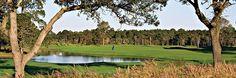 Meadows course #3. Bay Point Golf, #PanamaCityBeach #Florida